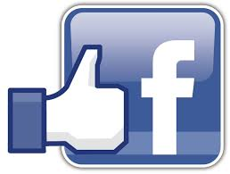 Facebook Vox Vivenda